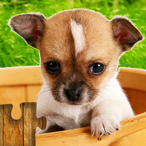 Dogs Jigsaw Puzzles Game – For Kids & Adults  28.5