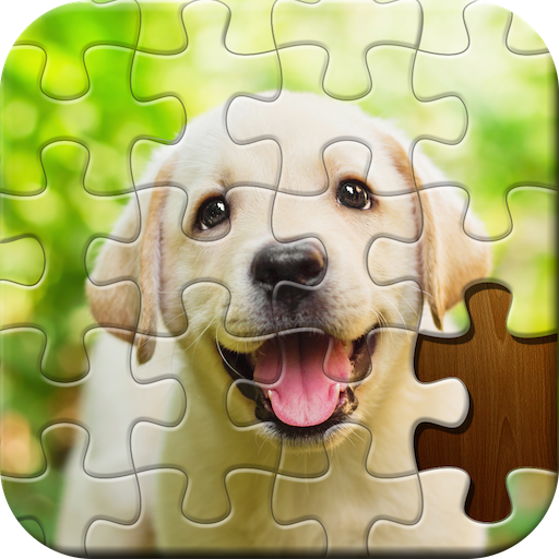 Jigsaw Puzzle Classic Puzzle Games  6.22.042