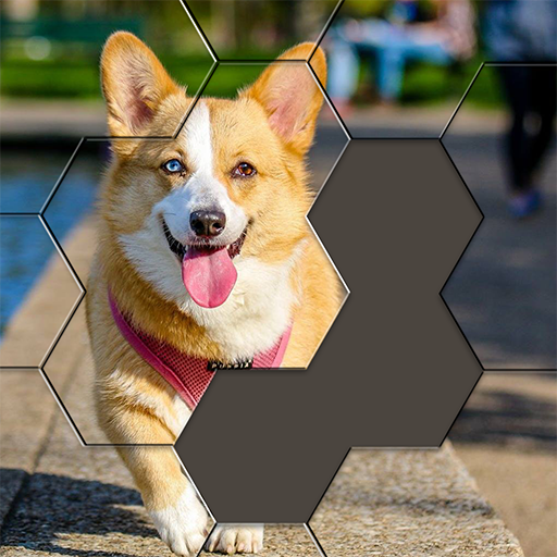 Hexa Puzzle Jigsaw: Anime Collection HD