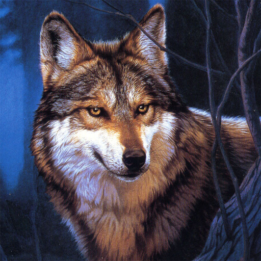 Wolf Jigsaw Puzzles  2.9.44