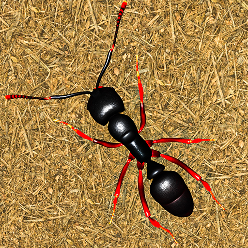 Ant Insect Games – Queen Fire Ant Simulator 1.1